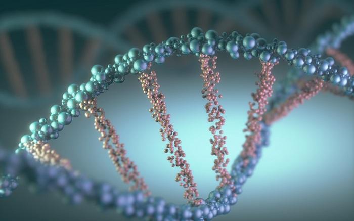 Medycyna personalizowana w onkologii – wyceluj prosto w raka!